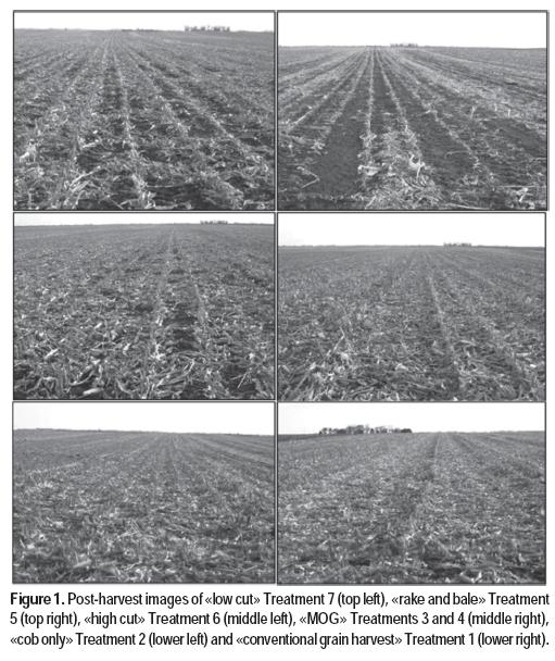 Corn stover harvest strategy effects on grain yield and for Soil quality indicators